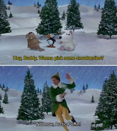 """34 """"Elf"""" Quotes That Never Get Old. Arctic Puffin"""
