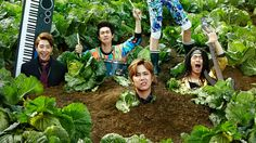 """Can the band members really make their new lives in farming work? """"Modern Farmer""""  I love this drama because in some episodes it could make me cry then laugh. I'm not a fan of HongKi, so I'm just watching it because of the side characters they're hilarious!!!"""