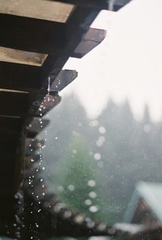 Rain.  This is the kind of simplicity which makes for beautiful moments in life.
