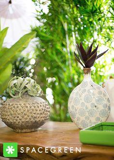Vase, Interior, Flowers, Plants, Inspiration, Decor, Biblical Inspiration, Decoration, Indoor