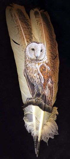 Mark Ricker: barn owl painted on feathers Feather Painting, Feather Art, Bird Feathers, Painted Feathers, Native Art, Native American Art, Felt Owls, Feather Crafts, Owl Art