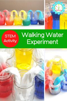 Kids will love making their very own walking rainbow from just three colors. This amazing walking rainbow experiment is the most fun walking water experiment ever! You'll have a blast with the rainbow walking water. Science Projects For Kids, Science For Kids, Preschool Science, Rainbow In A Jar, Rainbow Water, Rainbow Theme, Walking Water Experiment, Water Science Experiments, Summer Science