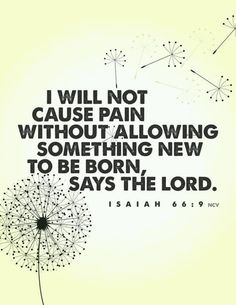 I will not cause pain without allowing something new to be born, says The Lord.  ((Need to remember this....))