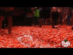 Tomatina.es Video promocional Travel to La Tomatina de Buñol - YouTube