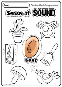Free Five Senses Worksheets Preschool Activity Sheets, Five Senses Preschool, My Five Senses, 5 Senses Activities, Preschool Learning Activities, Preschool Printables, Preschool Lessons, Kindergarten Worksheets, Worksheets For Kids