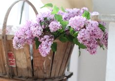 basket of purple