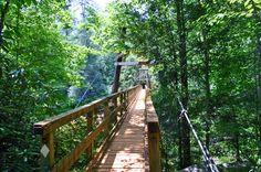 Toccoa Swinging Bridge in Blue Ridge, GA