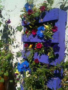 An old pallet. A great example of #upcycled brilliance!