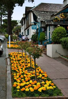 Carmel-by-the Sea, often called simply Carmel, is a city in Monterey County, California.