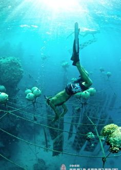 The underwater view of the Tahitian Black Pearl Farm!