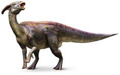 Parasaurolophus_mh9k5i.jpg (1440×910)