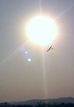Essa é das poucas fotos que tirei enquanto voava. Lancei, estabilizei, saquei o celular e click. DLG em Carapicuiba SP 2010.