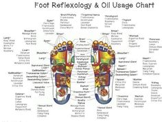 Reflexology   This popular form of massage focuses primarily on the feet. Reflexology is based on the theory that reflex areas in the hands and feet can promote health in other parts of the body, as well as organs and glands. When pressure is applied to the feet in particular, different chemicals such as endorphins can be released and consequently reduce pain and stress.