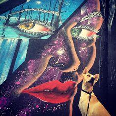 A arte urbana de São Paulo apresentada por um vira-lata cheio de pose 🇧🇷cidoeacidade@gmail.com