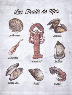 French Language Food Poster, Shell Fish, Les Fruits de Mer