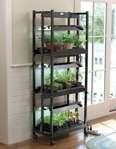 Compact Grow Light Stand 3-Tier Sunlite174; Garden High Output T-5 Bulbs For Sale https://ledgrowlightplant.info/compact-grow-light-stand-3-tier-sunlite174-garden-high-output-t-5-bulbs-for-sale/