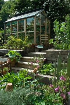 Gardening blog - garden design ideas, help  inspiration