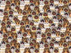 Élet+Stílus: Megint a pandát keresi az internet - Ön megtalálja? - HVG.hu