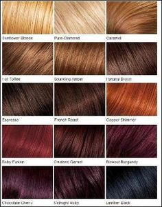shades of red hair color chart - Google Search