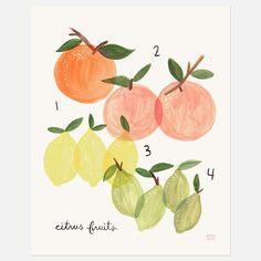Citrus Print byAnna Bond