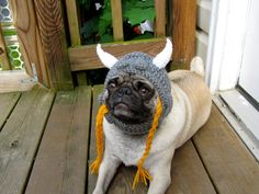 Because a mighty viking warrior lies in the heart and soul of every pug.