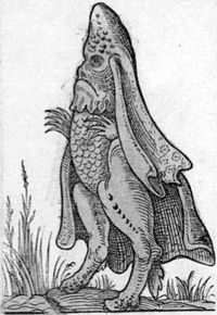Sea Bishop, 1562 by Richard Breton. At this time many Catholics and Protestants utterly despised each other, and clerical-looking monsters were a way of criticizing the followers of the wrong religion