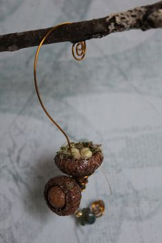 Fairy garden miniature acorn bird's nest