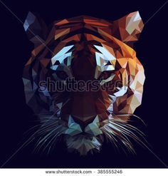 Low poly vector tiger illustration. Polygonal animal graphic design. Color filter on separate layer.