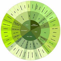 Cómo cultivar marihuana: febrero 2014