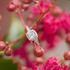 A Sweet Charleston Proposal