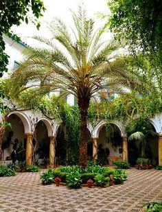 Cordoba,Andalucia, Spain. Moorish style internal courtyard.  This is like the Fonda I stayed at in Cordoba.