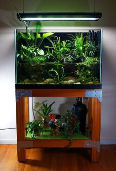 Cool 30+ Awesome Fish Tank Ideas https://gardenmagz.com/30-awesome-fish-tank-ideas/ #AquariumDecorationsIdeas