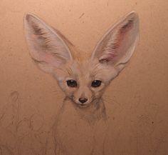 lovely fennec fox drawing    Esther Garcia