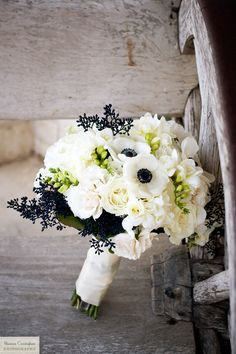 White flowers with dark accents