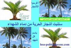 #Sudanese_Martyrs_Tree, the #dynamic_idea of the #Sudanese_journalist #Khalid_Mohammed_Osman.