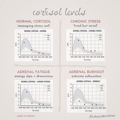 Adrenal Burnout, Adrenal Fatigue, Natural Anxiety Relief, Stress Relief, High Cortisol, Health And Nutrition, Women's Health, Health Tips, Therapy Journal