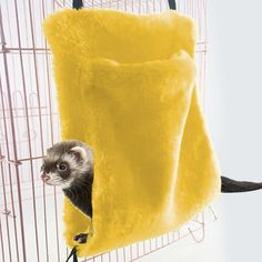 Pets Hammock Sleeping Bed Small Animals Hanging Bed Swing Warm Hamster Parrot Hammock Sleeping Mat Tent Cage for Pet Rest Home Toy Yellow L *** Inspect this outstanding item by mosting likely to the link at the photo. (This is an affiliate link). Small Animal Cage, Small Animals, Pet Hammock, Rest House, Pet Cage, Parrot, Pet Supplies, Tent, Sleep