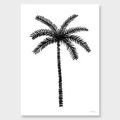 Lonely Palm Art Print by Samantha Totty