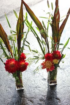 Arrangements made at Greenlife Grocery in Asheville for a catering event. Made with locally grown dahlias and canna leaves