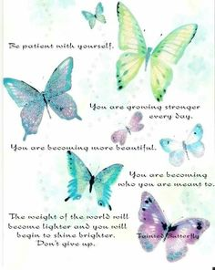 butterfly blue green design picture and wallpaper Butterfly Spirit Animal, Butterfly Quotes, Butterfly Pictures, Quotes To Live By, Me Quotes, Motivational Quotes, Inspirational Quotes, Postive Quotes, Words Of Encouragement