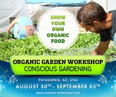 Receive expert advice on how to grow your own healthy, sustainable food! Conscious Gardening Workshop in Patagonia, AZ Aug 30 - Sep 05