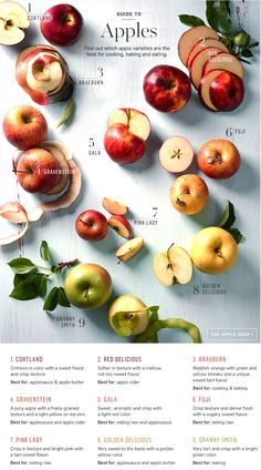How well do you know your apples? Here's our guide to the best apples for cooking, baking and eating!