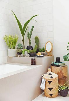 Pour apporter une jolie touche de nature dans votre salle de bain accumuler les plantes grasses, cactus et petits arbustres