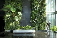 To beautify your workplace or house, vertical gardening is filed with the most novel and outstandingly modern ideas. Those eye-catching, green living walls with colorful flowers impart stylish and mind-blowing chic to the place. Vertikal Garden, Artificial Green Wall, Small City Garden, Vertical Garden Design, Vertical Bar, Green Facade, Green Wall Decor, Tabletop Fountain, Walled Garden