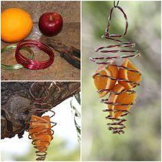 DIY Fruit Feeder for Birds
