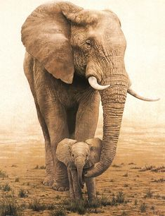 ".""Elephants have been known to die of broken hearts if a mate dies. They refuse to eat and will lay down, shedding tears until they starve to death. They refuse all human help."""