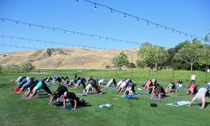 Ever wanted to do some yoga at a vineyard? Now you can at Wente Vineyards!