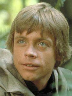 Skywalker on Endor