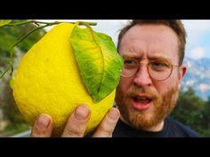 Lemons bigger than my head | Making Limoncello on Amalfi Coast FOOD BUSKER | John Quilter - YouTube Making Limoncello, My Best Recipe, Amalfi Coast, My Coffee, I Am Awesome, Alcoholic Beverages, Youtube, Food, Eat