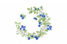 Blueberry wreath. Watercolor. by Svetlana Bakaldina on Creative Market